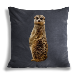Coussin Suricate Grey