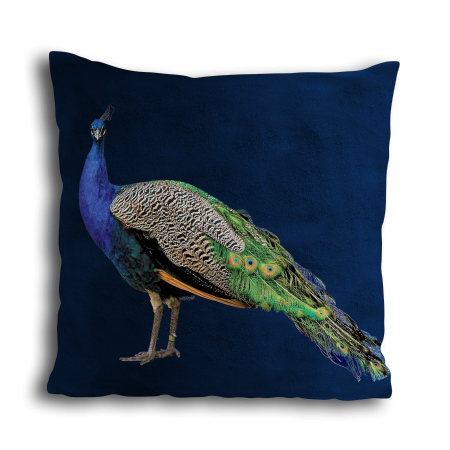 COUSSIN ROYAL PEACOCK