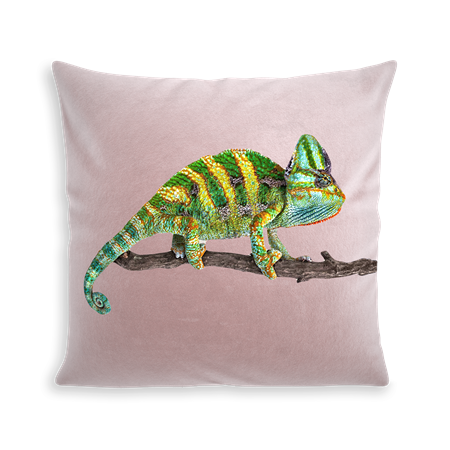 COUSSIN CAMELEON