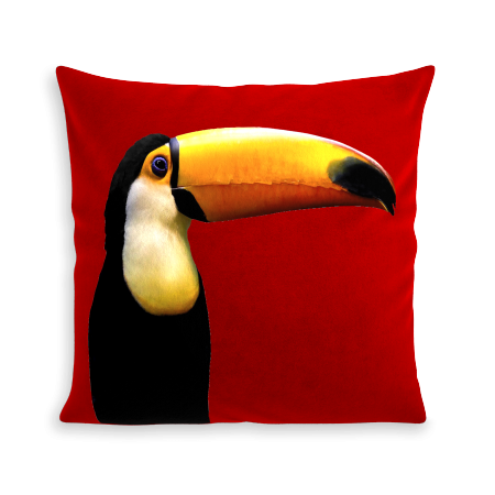 COUSSIN MR. TOUCAN