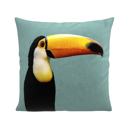 COUSSIN MR TOUCAN