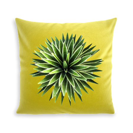 COUSSIN YUCCA