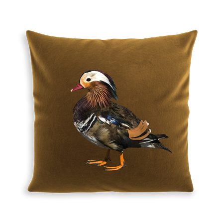 COUSSIN BABY DUCK