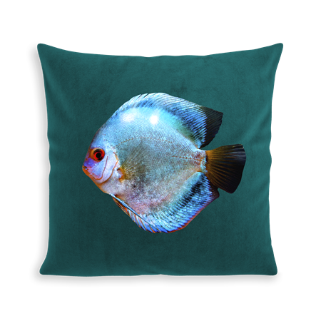 COUSSIN MISS BLUE