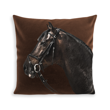 COUSSIN RACER