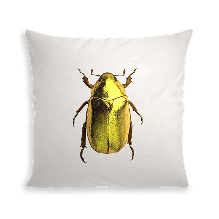 COUSSIN INSECT II