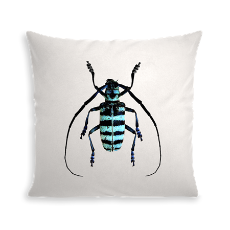 Coussin INSECT IX