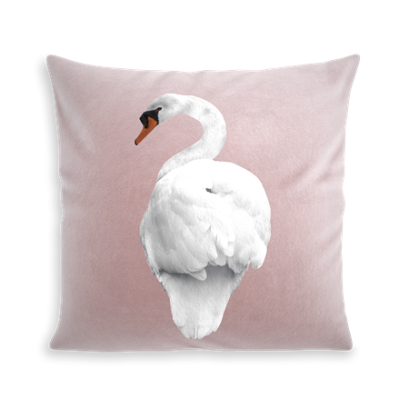 COUSSIN SWAN