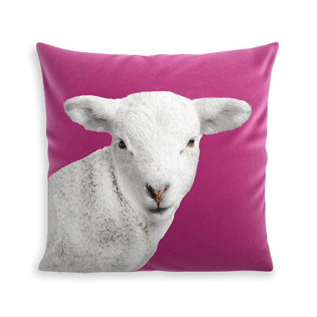 COUSSIN WOOLY