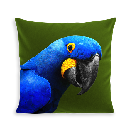 COUSSIN YAYA THE PARROT