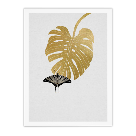 ART POSTER BUTTERFLY AND MONSTERA ORARA STUDIO